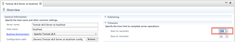 Eclipse Tomcat startup timeout - TriadWorks