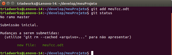 git add seguido do git status