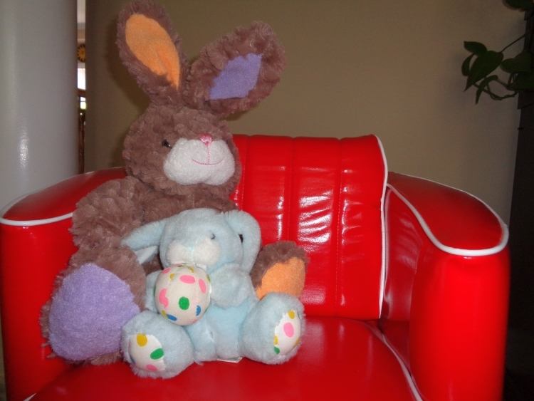 Stuffed animals: Fuzzy Bunny and Whasa Bunny