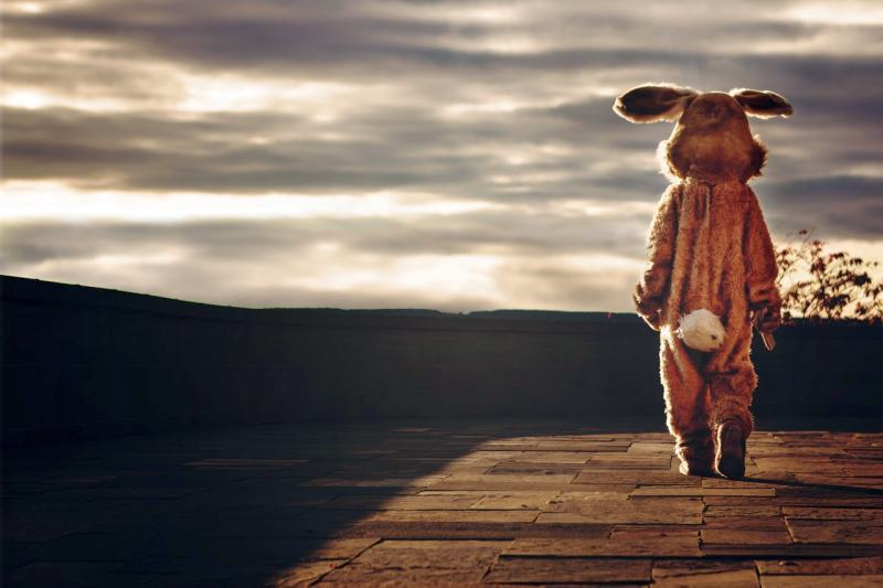 Person in rabbit costume looking at the horizon