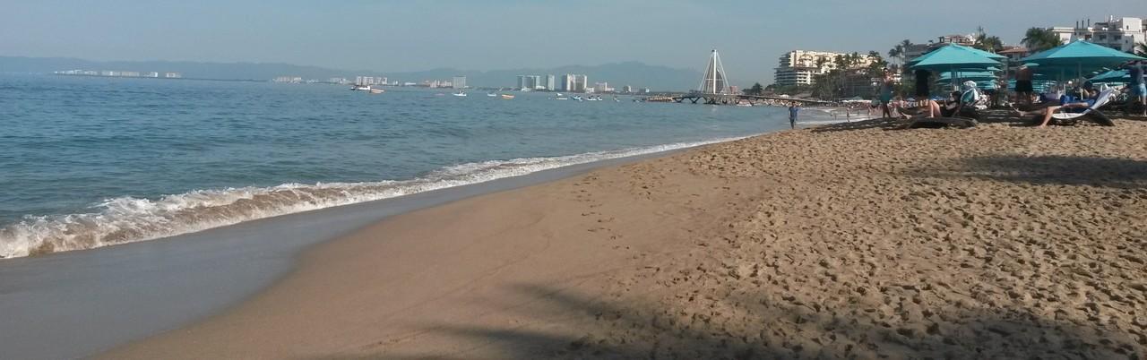 Shoreline_large
