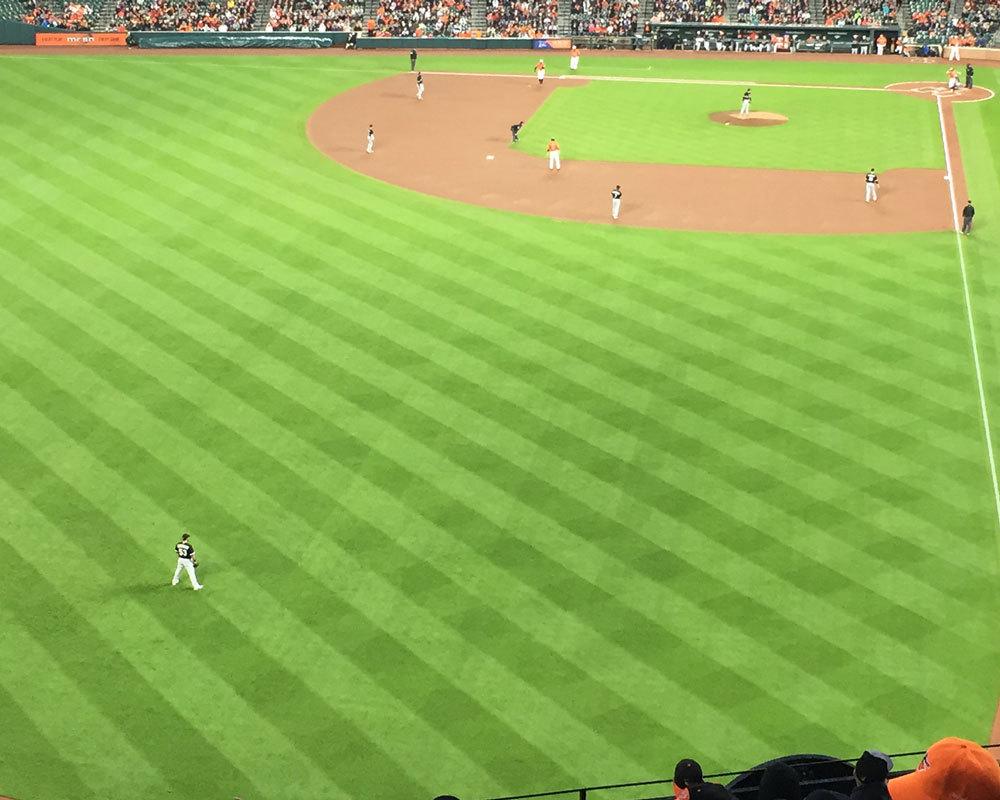 Baseball_large