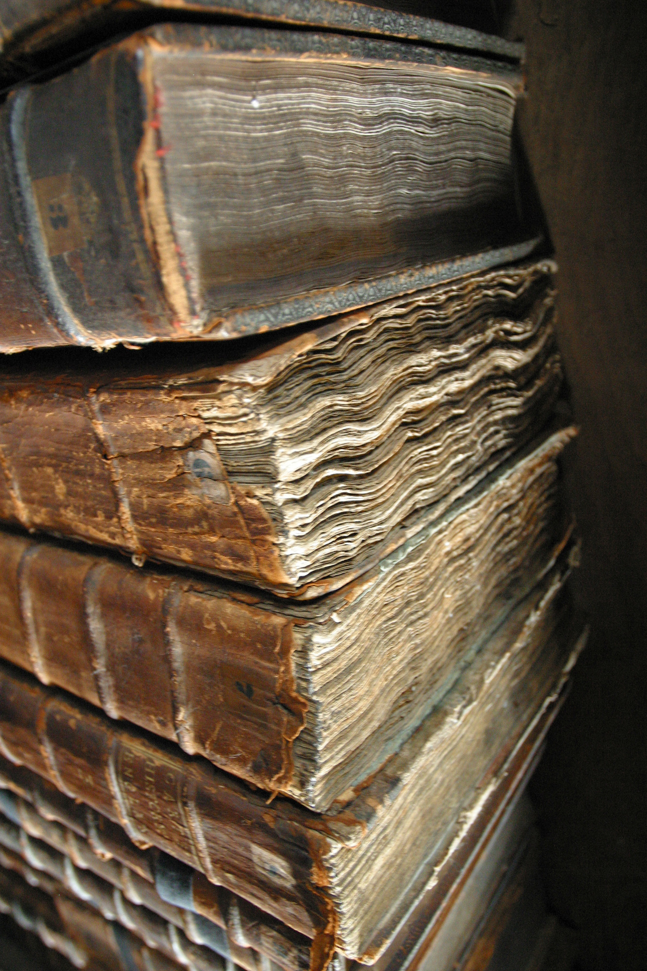 Old_book_bindings_large