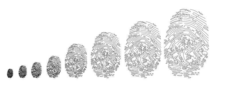 Toda entidade tem uma identidade | TriadWorks