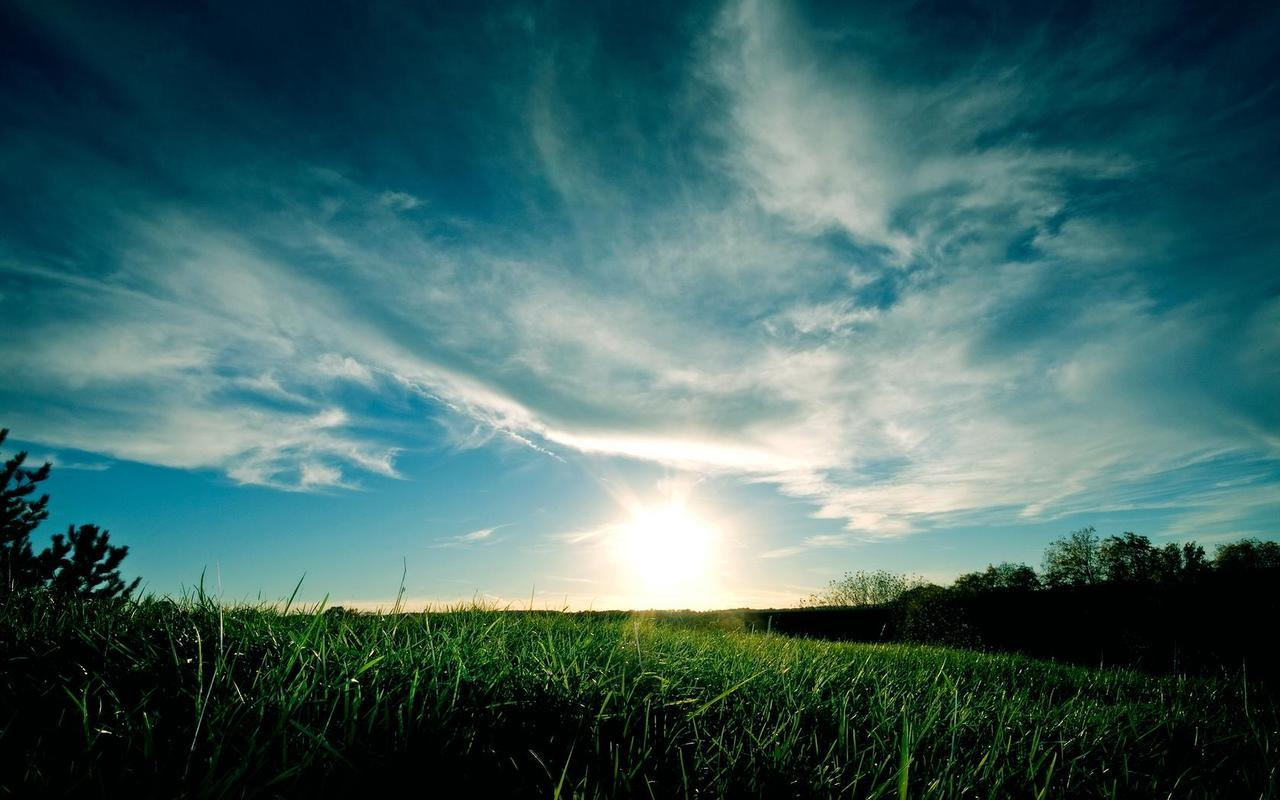 Grassy_sunset_by_landscapepic_large
